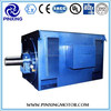 Y Series high-voltage AC induction electric motors