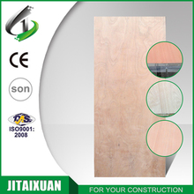 Made In China cheap hollow core interior flush door with plywood skin