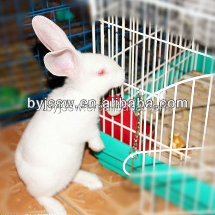 High Quality Breeding Cage For Rabbits