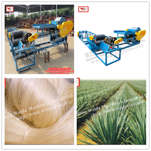 Dewatering and Cleaning Machine/Line for Fibre de Sisal