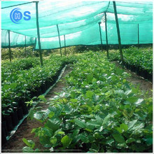 modern hdpe agricultural new products garden used no peculiar smell export sun shade net