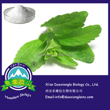 Powder stevia with factory price