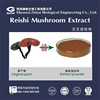 40% Enhance immunity Polysaccharides & Triterpenoid Reishi Extract