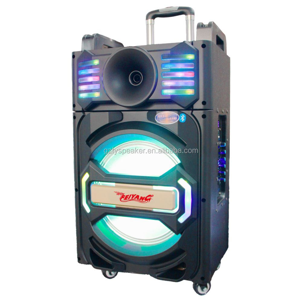 feiyang trolley speaker model box bluetooth speaker 10 inch with rechargeable battery 2 UHF wireless microphone fm radio usb sd