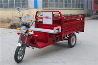 High quality strong power 1000w 60v 3 wheel tricycle for cargo