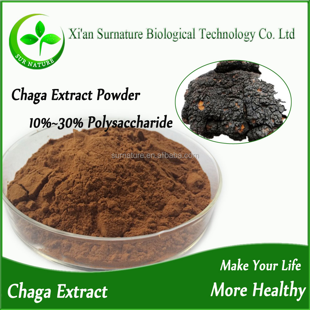 Free Sample Chaga Mushroom Extract / Russia Chaga Powder