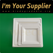 Biodegradable tableware disposable sugarcane paper plates square plates bagasse pulp food dishes unbreakable plant fibre