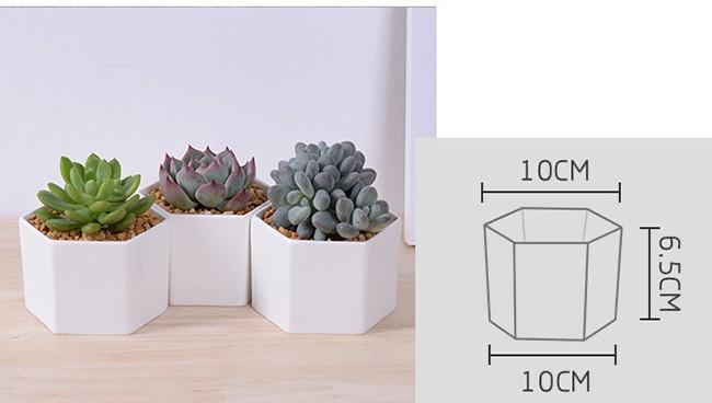 Windowsill Adornment Hexagon White Ceramic Indoor Pots For