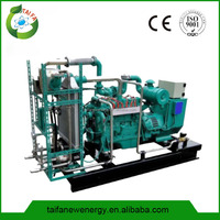 China factory container biogas plant generator