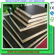 buliding construction material film faced plywood 18 mm plywood/film coated plywood