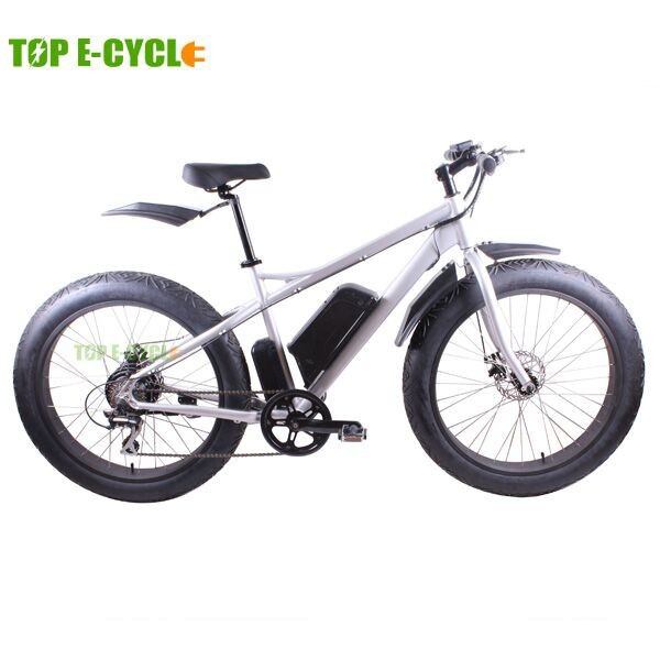 TOP E-cycle 26'' alloy rim low price green power electric bike