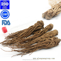 Pure Natural Chinese Radix Angelica Root
