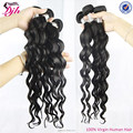 dijunhair wholeasle 100% Virgin brazilian Hair, different color natural wave hair extension human hair