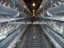 hot-sale automatic vertical lage-scale chicken wire animal cage