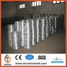 Hot Sale Galvanized Steel Wire / Electric Galvanized Wire / Binding Wire