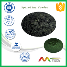Pure natural organic Spirulina Powder