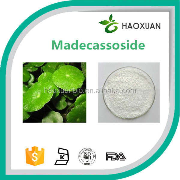 100% Natural Centella Asiatica Extract Powder Madecassoside