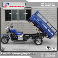LZSY powerful covered gasoline motorized tricycle for passengers