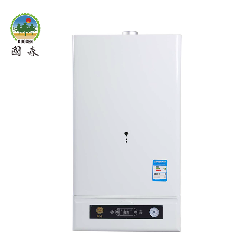 New style gas boiler with timer From TOP 500 Company