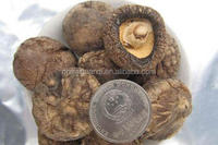 dried shiitake mushrooms cheap price