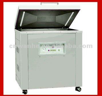 DZ(Q)-800/2E Fruit and vegetable vacuum packing machine