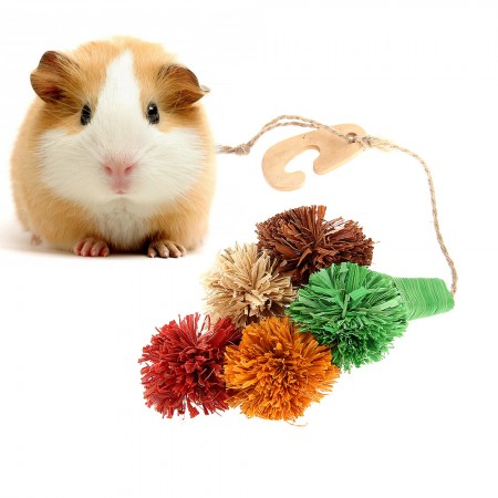 SMALL ANIMAL HAMSTER GERBIL MOUSE RABBIT GUINEA PIG TREAT CHEW TOY LOOFA SISAL