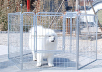 temporary outdoor dog fence