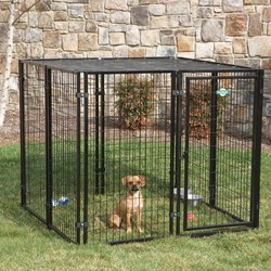 best-selling dog cage trap double dog cage dog cage singapore sale
