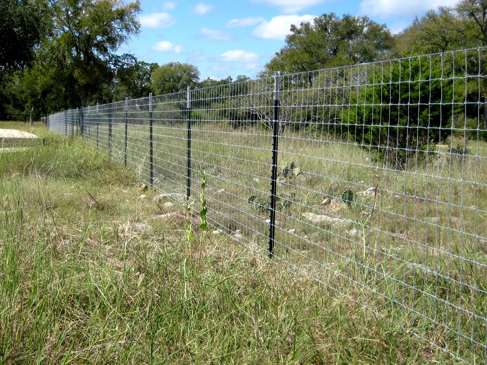 Farm Guard Steel T Fence Post Buy T Post Steel T Post