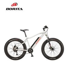 Power ebike Lithium Battery 36V 10.4Ah Fat Type Electric Mountain Bike