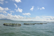 Aquaculture fishing farming equipment floating net/fishing cage with high quality PE pipe