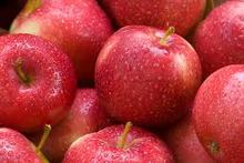 new crop fresh red delicous sweet crispy health Tianshui huaniu apple