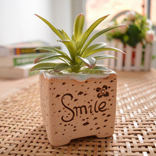 Home decor garden flower glazed ceramic plant pot