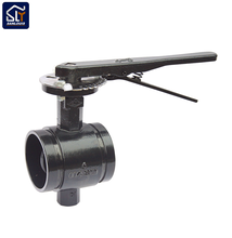 Alibaba Gold Supplier 1 inch butterfly valve with different style