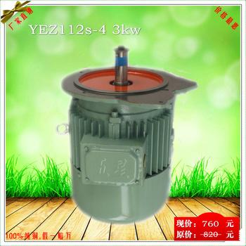 YEZ 3kw Conical Brake Motor