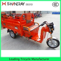 China 800W/1000W/1200W 3 Wheel Electric Tricycle Cargo