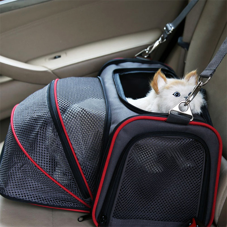 Foldable soft sided pet travel cat carrier