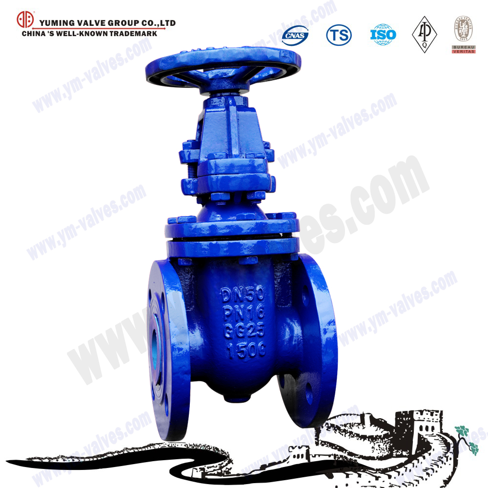 Flanged ends type mss sp-70 cast iron bronze trim rising stem wedge gate valves pn10/pn16