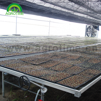 Agricultural Ebb flow trays rolling bench system for greenhouse