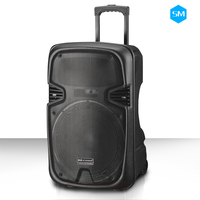 Multimedia mega base outdoor 15 inch speaker box