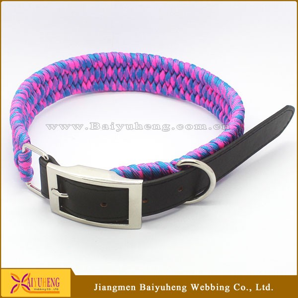 custom purple leather dog collar small dog collar for sale