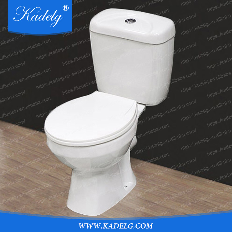 Water Saving Dual-Flush Flushing System Ceramic WC Toilet Bowl