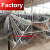 High quality layer chicken cage for bangladesh for poultry farm