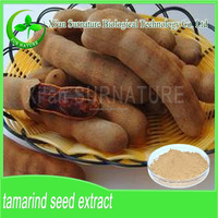 Organic tamarind extract/tamarind powder/tamarind concentrate