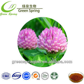 Red Clover/Red clover extract,red clover extract powder,red clover p.e