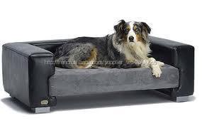 Canap s en cuir pour chiens lit pour chien de luxe autres for Canape pour petit chien pas cher