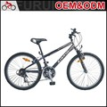 Factory Customizable 26 inch Steel carbon mountain bike