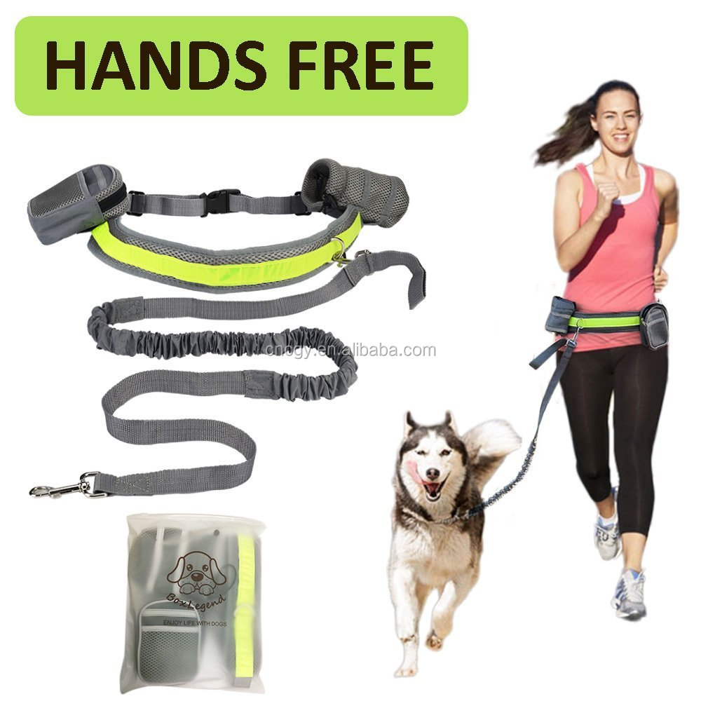 Hands Free Running Dog Leash Bungee Reflective Stitch for Jogging Walking Hiking