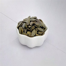 Big size GWS pumpkin seeds for wholesale
