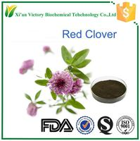 manufacturer wholesale red clover price trifolium pratense l